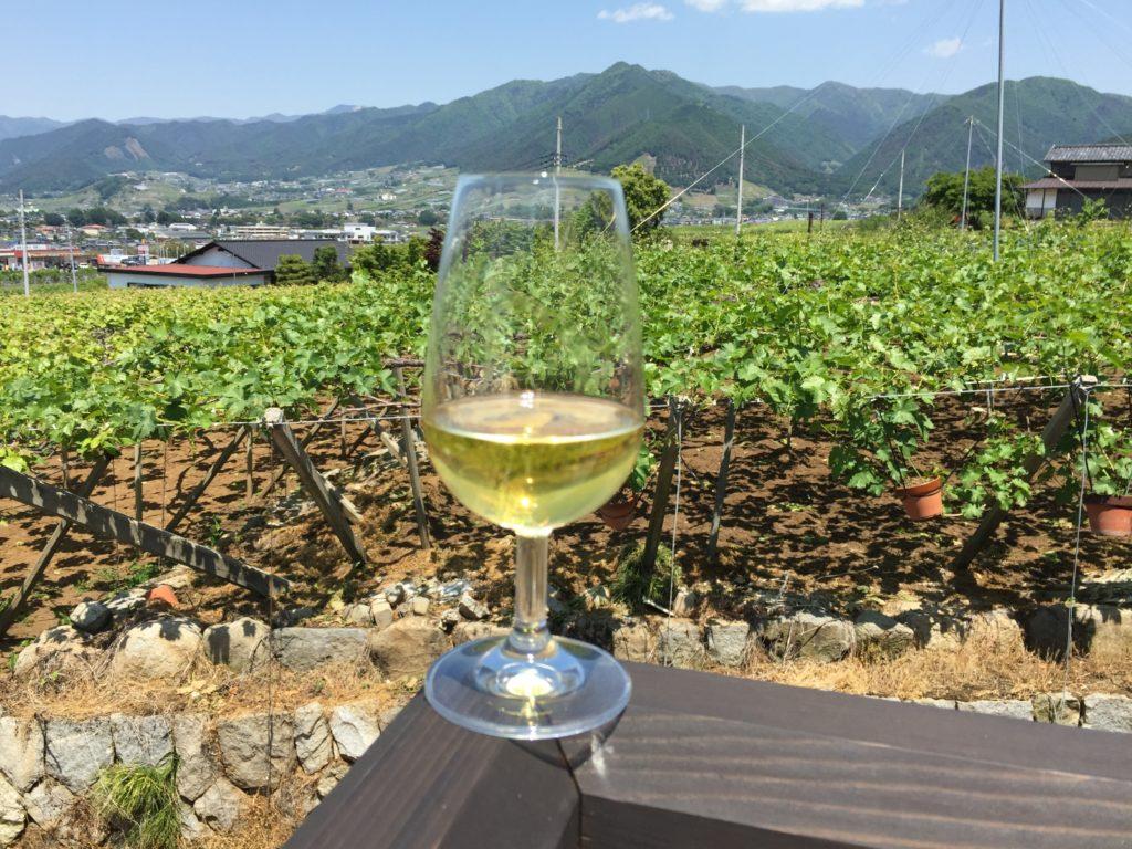 丸藤葡萄酒のテラスから見たぶどう畑