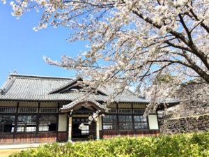 甲府市舞鶴城公園の桜と武徳殿