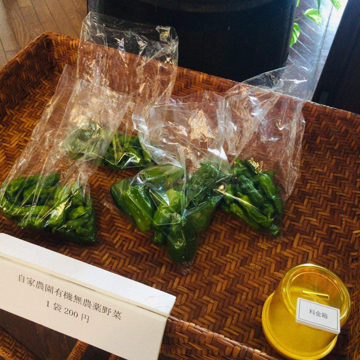 グレイスワインで販売していた無農薬有機野菜