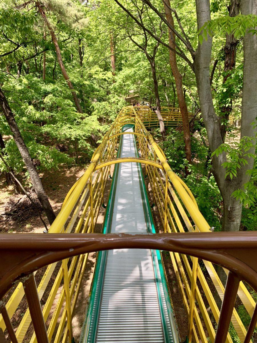 金川の森 どんぐりゾーンのローラーすべり台