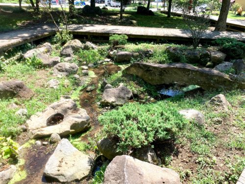 北杜市にある三分一湧水の入口付近のビオトープ