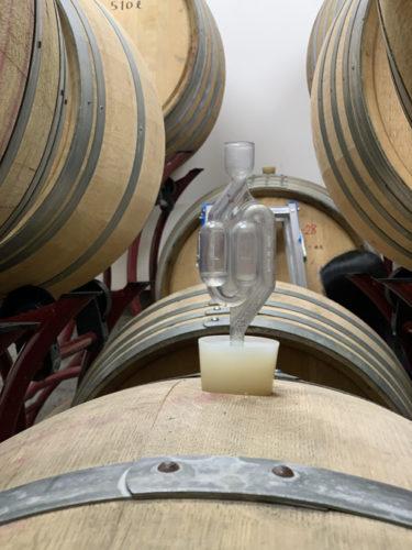 ペイザナ中原ワイナリーの醸造室
