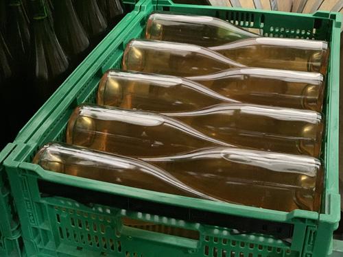 ドメーヌ・オヤマダで瓶内熟成中のワイン