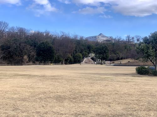 双葉水辺公園の広場